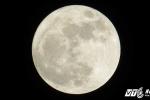 Video: Siêu trăng khổng lồ rực sáng trên biển Đồ Sơn
