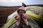 Ám ảnh cuộc sống người tị nạn chạy trốn IS