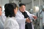 Triều Tiên khoe thần dược chữa được ung thư, Ebola, AIDS