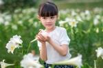 Bé gái 5 tuổi dễ thương toả sáng bên cánh đồng hoa loa kèn