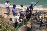 Theo chân đội tìm kiếm kho báu 4.000 tấn vàng ở Bình Thuận