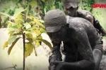 Video: Lực lượng tinh nhuệ của Quân đội Việt Nam