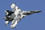 Xôn xao thương vụ Trung Quốc đổi 180.000 con chó lấy chiến cơ Su-27 Nga