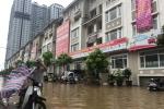 Cư dân biệt thự triệu đô lại 'rẽ sóng ra khơi' sau mưa
