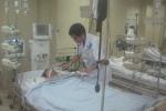 Hà Nội: Cây đổ trong bão số 3, nam thanh niên bị điện giật hôn mê sâu