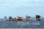 Bất ngờ phát hiện vỉa dầu mới ở giếng khoan thăm dò mỏ Bạch Hổ
