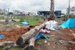 Đang chăm sóc vườn cảnh, nam thanh niên bị cây đè chết thương tâm