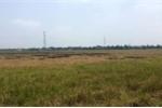 Giá nhà đất phía Tây Sài Gòn tăng giá gấp đôi