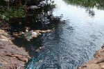 Hãi hùng nước thải sinh hoạt nhuộm đen dòng kênh