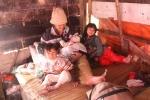 Chuyện khó tin ở gia đình 'đông con nhất Việt Nam'