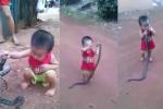 Rùng mình clip bé trai cầm con rắn còn sống quăng quật như đồ chơi