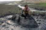Cảm động cảnh cứu voi mắc kẹt trong vũng bùn lầy 4 ngày