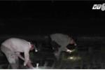 Nông dân Nghệ An cấy đêm để tránh nóng