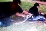 Clip: Liều mình vào ống cống sâu hun hút giải cứu cún con