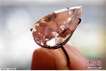 Cận cảnh viên kim cương hồng hiếm có, dự kiến giá 800 tỷ đồng