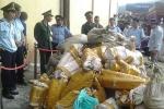 'Trà trộn' ngà voi trong container đậu đỏ đưa về Việt Nam