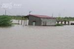 Nằm trong tâm bão, Hải Phòng thiệt hại nặng nề