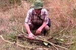 Người đưa thảo dược 'trường sinh' từ núi cao Tây Tạng về Việt Nam