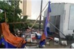 Cuồng phong ở Hà Nội: Hơn 100 cây xanh gãy đổ, nhiều người bị thương
