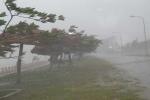 Tháng 8 sẽ có 2 cơn bão 'đe dọa' Việt Nam