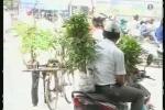 Tìm lại nét đẹp truyền thống của chợ phiên Hà Nội