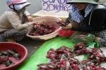 Ghẹ xanh, tôm hùm giá cực rẻ 'bò' ở vỉa hè Sài Gòn