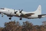 Hoàn Cầu thời báo lớn tiếng dọa bắn hạ máy bay Australia trên Biển Đông