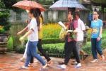Sĩ tử đội mưa tới Văn Miếu cầu may