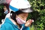 Bị khỉ tấn công trên bán đảo Sơn Trà, nữ du khách nhập viện