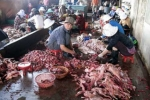 Lào Cai: Nhà dân tốc mái, hàng loạt gia súc bị sét đánh chết