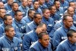 Bí ẩn xung quanh việc lấy nội tạng tử tù của Trung Quốc