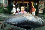 Đầu năm bắt được cá mú khổng lồ 260kg