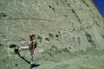 Phát hiện dấu chân khủng long lớn nhất tại Mông Cổ