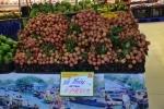 Vải thiều được mùa - Người Việt ủng hộ nông sản Việt