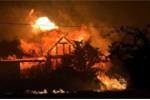 Ảnh: Cháy rừng kinh hoàng ở Mỹ, 19 lính cứu hỏa hy sinh