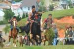 Gay cấn cuộc đua ngựa không yên ở Langbiang