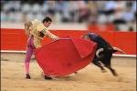 Sự thật thú vị về nghề đấu sĩ bò tót ở Tây Ban Nha