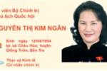 Infographic: Chân dung tân Chủ tịch Quốc hội Nguyễn Thị Kim Ngân