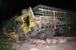Tai nạn thảm khốc trên đường Hồ Chí Minh, 3 người thương vong, heo chết la liệt