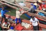 Hàng trăm ngư dân làm thuê trái phép trên tàu Trung Quốc đã trở về