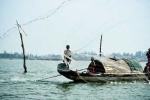 Phát hiện rùa biển quý hiếm lạc vào phá Tam Giang