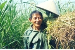 Anh hùng lao động Hồ Giáo 'đã về với cỏ'
