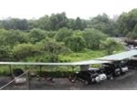 Hà Nội đồng ý xây bãi đỗ xe ngầm trong công viên Thống Nhất