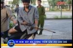 'Cẩu tặc' dùng súng bắn điện trộm gần 200 con chó