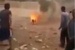 Phẫn nộ clip đám thanh niên buộc thuốc nổ vào chú chó rồi cho nổ tung