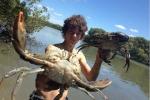 Clip: 'Dân chơi' tay không bắt 'thủy quái' cua bùn khổng lồ để làm thịt