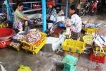 Công nghệ làm chả bằng cá thối ướp hóa chất ở Phú Yên