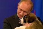 Thủ tướng Bulgaria tặng chó cho Thủ tướng Nga Putin