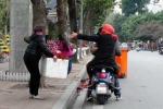 Video: Người Hà Nội tranh cướp hoa trang trí ở Hồ Gươm