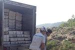 Thanh Hóa bắt giữ lô hàng cá nóc chết thối vận chuyển từ Huế